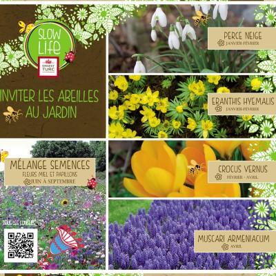 Invitez les abeilles au jardin